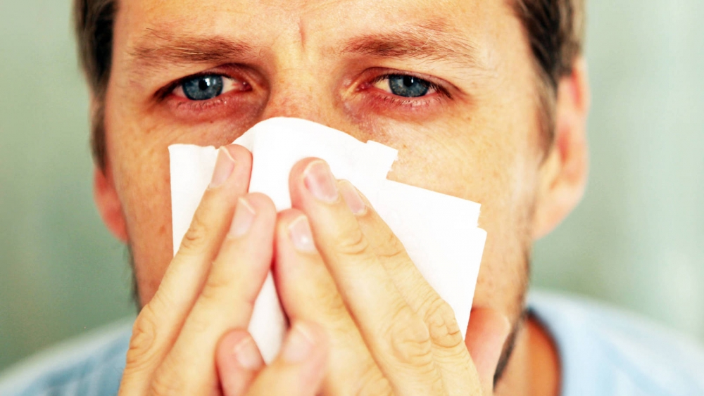 Cuida de tu salud: Cómo evitar alergias